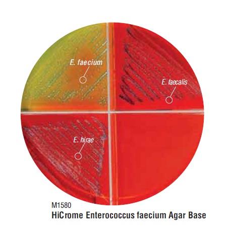 Ridacom Comprehensive Bioscience Supplier Hicrome